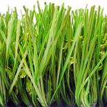 Artificial Grass3
