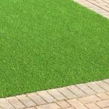 Artificial Grass8