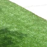 Artificial Grass7